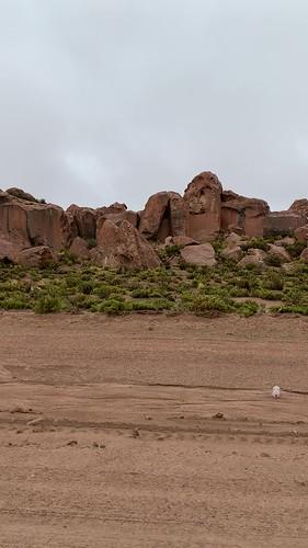 The Valley of Rocks (Valle de las Rocas) at 4,100m. (13,451.44 ft.), Bolivian Highlands (Altiplanos Boliviano), Potosí, Bolivia.