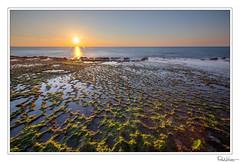 (Raul Kraier) Tags: sea water rocks green sky sunset long exposure longexposure ray sunray mediterranean luminosity mask canon canon5dmarkiv habonim