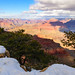 US - Arizona - Grand Canyon - Yuvapai Point