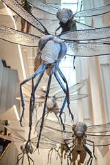 Run for your life (Rob₊Lee) Tags: art installation deviation hybrid monster insect human fused flying hanging space direction spooky run coming atyou shock factor gallery eyes dragonfly half creature attack wings legs spikes safe nonsafe r18