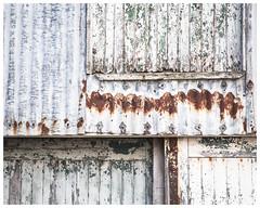 Patterns (AEChown) Tags: decay paint peelingpaint rust garagedoor corrugatediron abstract