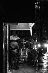 (kayters) Tags: rain raining wet umbrella winter february newyorkcity newyork eastcoast kaytedolmatchphotography kathleendolmatch explore travel adventure nightphotography canon cityscape portrait citylights blackandwhite streetphotography