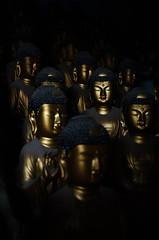A face in the crowd (cam-pics) Tags: nikon d5100 southkorea korea buddhas lowkey faces statues statuettes figures figurines golden bronze temple busan seokbulsa