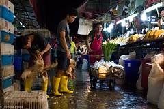 Market Scene at Night (Rich Friend) Tags: night nightscene market food chicken work labour bangkok thailand asia meat butcher fuji fujixt2 documentary street travel