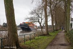 Kiel Canal / Nord-Ostsee-Kanal (peterkaroblis) Tags: kielcanal nordostseekanal schiff ship kanal canal fahrrad bicycle baum tree radweg bicyclepath container wasse water