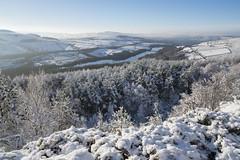 Snowy january morning (Keartona) Tags: tintwistle glossop derbyshire england pennines hills snowy snow winter landscape january morning beautiful nature trees reservoirs valehouse