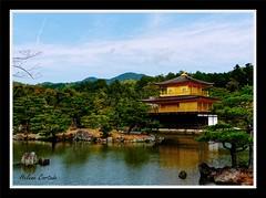 Temple d'or à Kyoto (hcortade) Tags: templedor lak lake kinkakuji japon kyoto doré paysage eau arbre tree jardins coth5 outside dehors nature