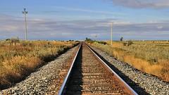 Looking west - CP Rail Crowsnest Route tracks west of Fort MacLeod, Alberta. (edk7) Tags: nikond300 nikonnikkor18200mm13556gedifafsvrdx edk7 2008 canada alberta municipaldistrictofwillowcreek canadianpacificrailway cprail crowsnestroute nearcrowsnesthighway westoffortmacleod rail railway railroad rwy rr track prairie foothills farm field sky cloud ranch crop grass gravel rust trackballast sleeper railroadtie crushedstone horizon rotobale lookingwest utilitypole shadow scrub rustic rural country countryside