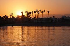 Sterns Wharf Sunset - Santa Barbara, California (russ david) Tags: santa barbara ca california sunset stearns wharf pacific ocean palm trees beach june 2018 travel