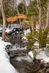 Winter babbling brook, Shubie Park, Dartmouth Nova Scotia 2 (internat) Tags: 2019 canada novascotia ns shubiepark winter eosm5 aurorahdr hdr
