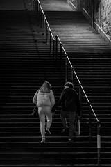 A Night wander with Alasdair Jan 2019-10 (Philip Gillespie) Tags: edinburgh scotland 2019 january canon 5dsr long exposure movement people man woman boy girl kids steps stairs lights buildings street christmas festive flood car trails light dark pavement sidewalk cobbles windows winter shop front barbers railings star lines wide