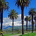 Winter in Southern California, Redlands 2-19