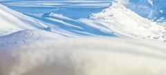 Snow Covered Range (Scott M. Mohn) Tags: snow weather perspective shadows sonyilca99m2 hdr climate cold suburban minnesota precipitation white landscape winter