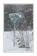 signs of winter (D J England) Tags: djenglandphotography douglasjengland winter brucepeninsula canonpowershotg3x dje canada ontario southernontario djengland simpsonave tobermory snow