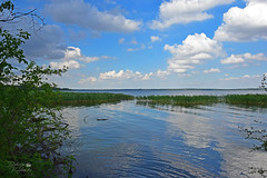 На дикому узбережжі Дніпра (ucrainis) Tags: dnieper river riverbank summer clouds reflections reflection ukraine landscape riverscape countryside sunny blue green colourful cane rush reed south nature