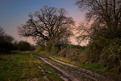 muddy lane in Brill, Buckinghamshire, Walk 184 (Glenn Birks) Tags: muddy lane brill buckinghamshire england aylesbury