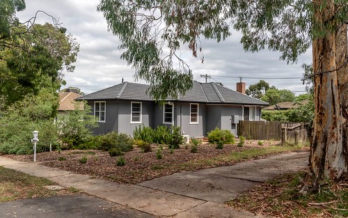 19 Piper Street, Ainslie ACT 2602