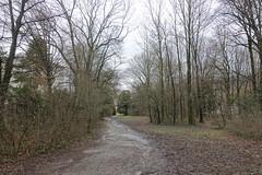 Parc des Raisses @ Annecy-le-Vieux (*_*) Tags: march 2019 hiver winter afternoon europe france hautesavoie 74 annecy savoie annecylevieux parcdesraisses park