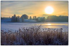 Nordbytjernet 30.12.2018 (Krogen) Tags: norge norway norwegen akershus romerike ullensaker nordbytjernet winter vinter landscape landskap krogen olympusomd