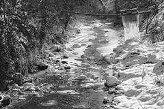 Icy mountain creek (superhic) Tags: winter snow ice creek water river white zima sneg potok blackwhite