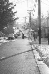 Day 60 of 365 - A street (gcarmilla) Tags: street road strada famiglia family linee lines snow neve morning mattina