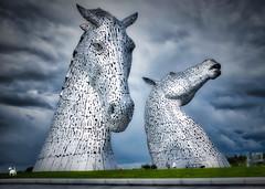 Kelpies and wee white dog (HelenBushe) Tags: kelpies falkirkwheel canal statue sculpture art publicart scotland