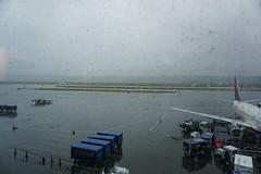 Rainy PDX evening (kevincrumbs) Tags: portland northeastportland portlandinternationalairport pdx kpdx delta deltaairlines dl boeing 737 737900 737900er n849dn airliner airport