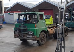 Superior looks (Reiver RE229) Tags: guy warrio aec tipper 1966 kent