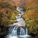 Fairbrook Falls - explored 20Jan19 (tonynorth1) Tags: