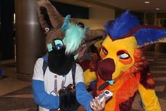 IMG_8969 (South Kitsune) Tags: fursuit furries furcon costumes cosplays caliur furry fandom