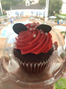 Disneyworld Minnie Mouse Cupcake (DolceDanielle) Tags: disneyworld disney world sweets cupcake cupcakes minnie mouse birthday scone scones funfetti