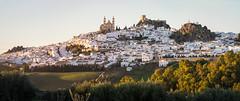 Spain - Cadiz - Olvera (Marcial Bernabeu) Tags: marcial bernabeu bernabéu europe europa spain españa andalucia andalucía andalusia cadiz cádiz olvera view vista panorama panoramica panorámica skyline