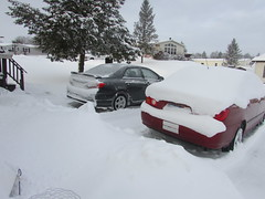 Polar vortex 2019 (creed_400) Tags: snow cold ice belmont west michigan january winter