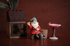 High on Life (N.the.Kudzu) Tags: tabletop stilllife small resin garden gnome canoneosm 7artisans35mmf12 lightroom
