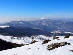 háttérben a Rozsály-csúcs / on the background the Igniş-peak (debreczeniemoke) Tags: tél winter hó snow túra hiking erdő forest fa tree hegy mountain gutin gutinhegység gutinmountains sziklabérc piton kakastaréj creastacocoşului rozsály igniş olympusem5