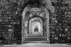 Les arches (alain.winterberger) Tags: arches pierre grandpont pontpichard pont bridge lausanne flon noiretblanc noirblanc architecture monochrome blackwhite white black bnw nb suisse switzerland schweiz svizerra panasonic 20mm