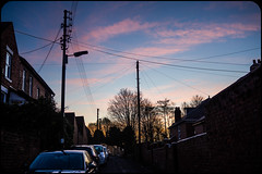 Night skies and silhouettes. (CWhatPhotos) Tags: cwhatphotos camera photographs photograph pics pictures pic picture image images foto fotos photography artistic that have which contain panasonic 20mm lumix prime lens olympus omd em10 mk ll flickr