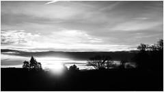 Creeping out (frankdorgathen) Tags: alpha6000 sony18200mm landschaft landscape dawn morgens morning ruhrpott ruhrgebiet bochum monochrome blackandwhite schwarzweiss schwarzweis wolken clouds himmel sky sonnenaufgang sunrise