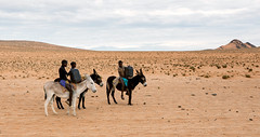 Local Himba Village Children riding to a well to fetch water (Trouvaille Blue) Tags: africa namibia kaokoveld kunene himba water well mules children tribe trouvailleblue donkeys landscape