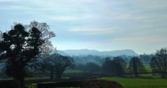 Photo of Misty landscape