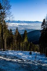 0158_DSC_2594 (marcellszmandray) Tags: kirándulás tél lucskaifátra szlovákia hó fátra
