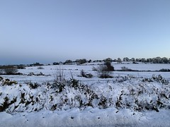 Snow day (firehouse.ie) Tags: landscape hills hill ireland snowscape countycork snow evening dusk