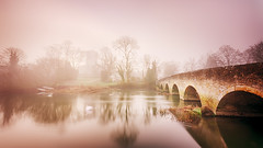 In the mist morning, on the edge of time we've lost the rising sun… (2019-02-22) (snjscuba) Tags: uk england bedfordshire felmersham river ouse morning mist misty fog foggy swan swans church bridge