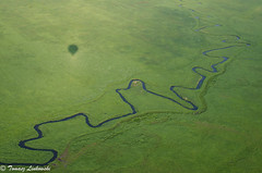Wissa river meanders seen from a balloon (tomaszberlin) Tags: landscape wissariver poland poska biebrza air ballooning spring grass nature nikon