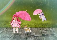 Spring Rain (Arthoniel) Tags: ninielle nell chime rain spring doll bjd balljointeddoll dragon dog aileendoll pico latidoll tan latiyellow elf sophie puppy rainbow