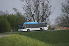 MAN Lion;s Coach Breng 5344 met kenteken 01-BBJ-2 als lijn 33 richting Nijmegen CS op de dijk bij Haalderen 30-03-2019 (marcelwijers) Tags: man lions coach breng 5344 met kenteken 01bbj2 als lijn 33 richting nijmegen cs op de dijk bij haalderen 30032019 lijnbus bus linienbus busse buses öpnv nederland niederlande netherlands pays bas gelderland lingewaard openbaar vervoer busvervoer