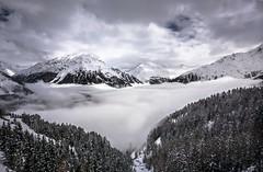 über den Wolken... (mailo mops) Tags: berge ötztal nebel wolken giggijoch schnee winter natur bäume wald österreich gebirge sölden