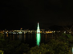 img_0679 (Ricardo Jurczyk Pinheiro) Tags: reflexo água iluminação árvoredenatal lagoarodrigodefreitas riodejaneiro