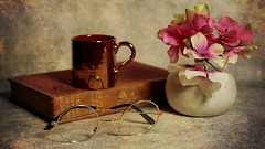 Still Life (N.the.Kudzu) Tags: tabletop stilllife eyeglasses book cup vase flowers canoneosm canoneflens photoscape