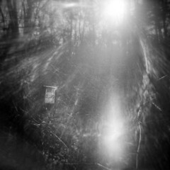 Silver Lake in Winter #29 (LowerDarnley) Tags: holga topsfield ma woods flare sun sign closed areaclosed winter